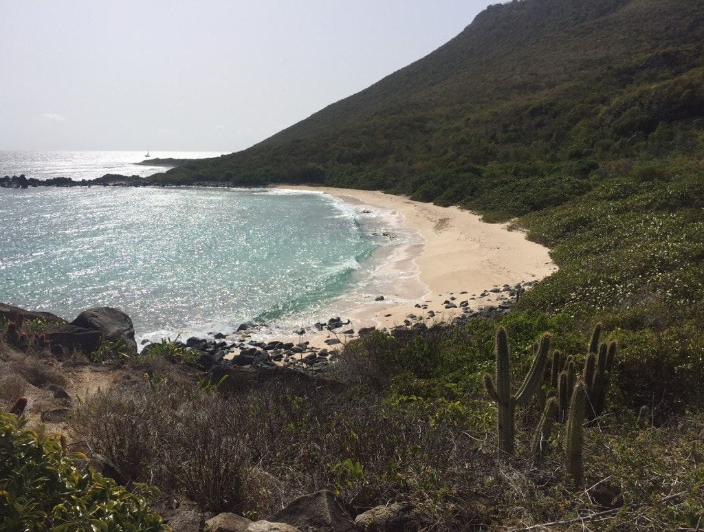 """View of the beach from the trail - """"Hiking in St. Martin"""" - Two Traveling Texans"""