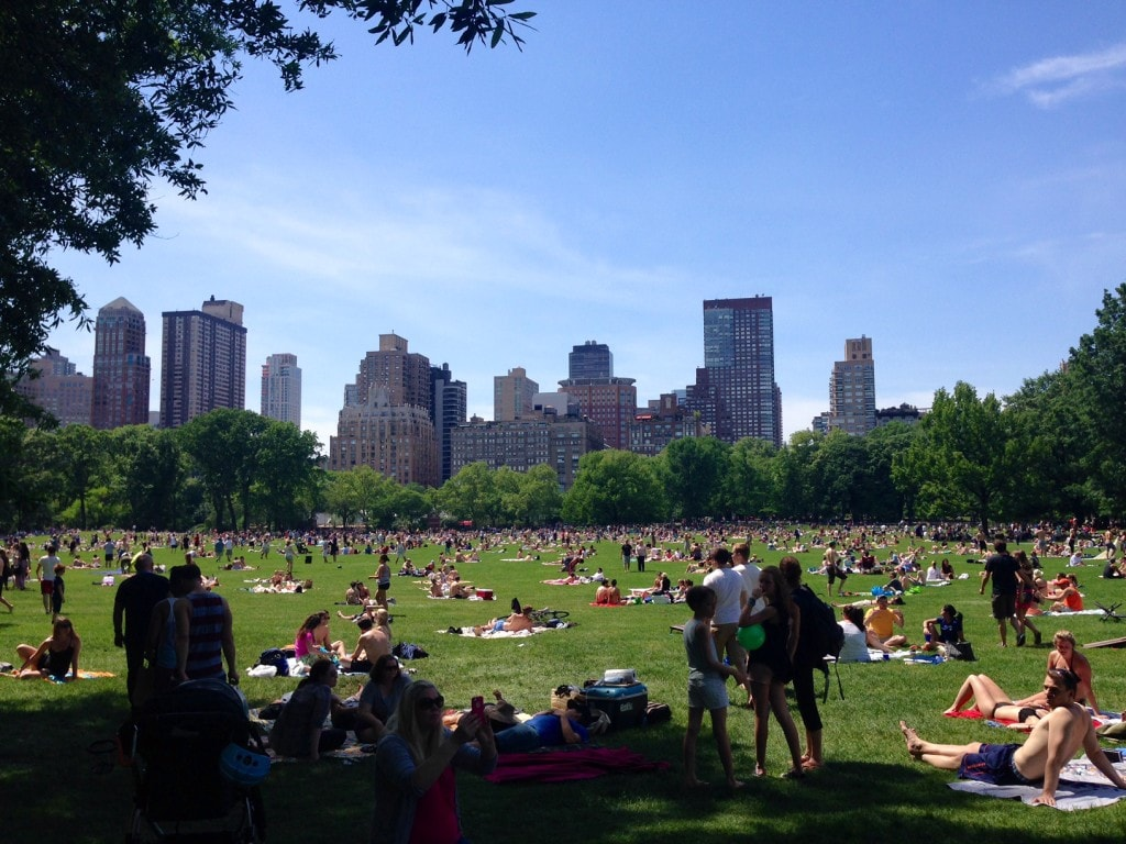 Sheep Meadow on a beautiful summer day.