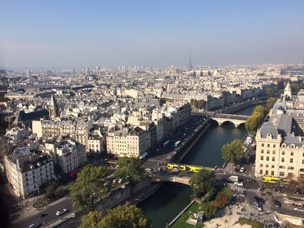 "View of the Seine from the top of Notre Dame - ""12 Random Observations about Paris, France"" - Two Traveling Texans"