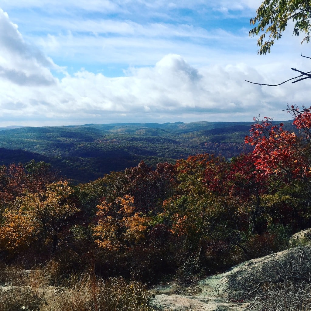 View of the fall foliage from the top of Bear Mountain
