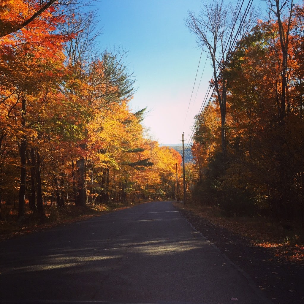 Peak fall foliage in the Hudson Valley is really breathtaking!