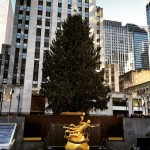 Holiday Time In New York City – A Winter Wonderland