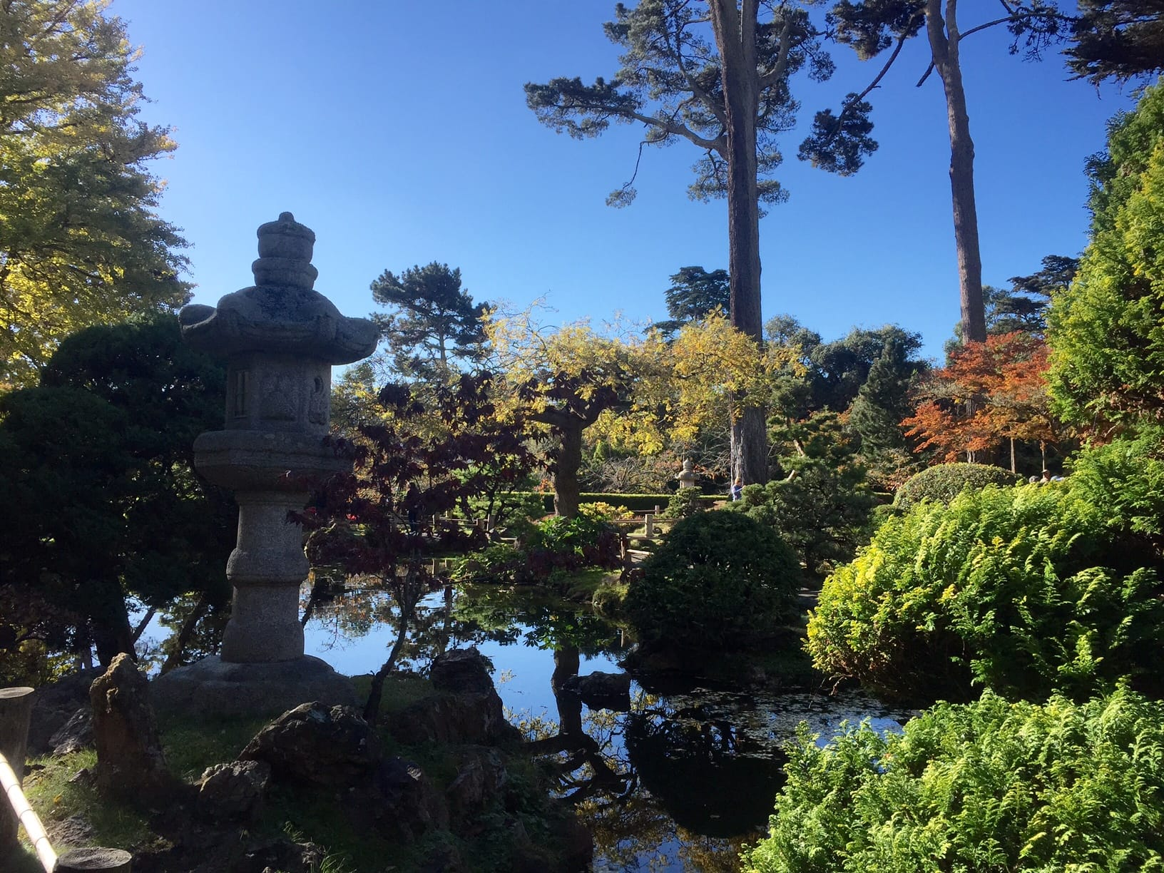 Golden Gate Park - More than Your Average Greenspace