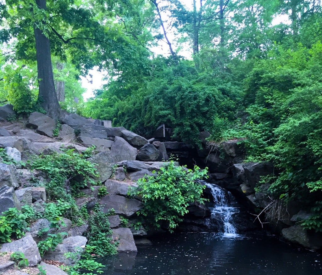 """A waterfall in the North Woods. - """"The Hidden Gems in Northern End of Central Park"""" - Two Traveling Texans"""