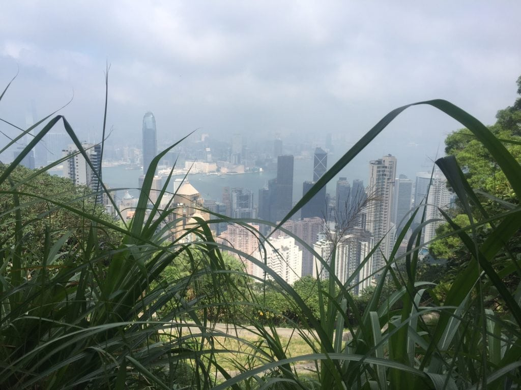 """I love the mix of nature and the city skyline.- """"Don't Miss Victoria Peak When Visiting Hong Kong"""" - Two Traveling Texans"""