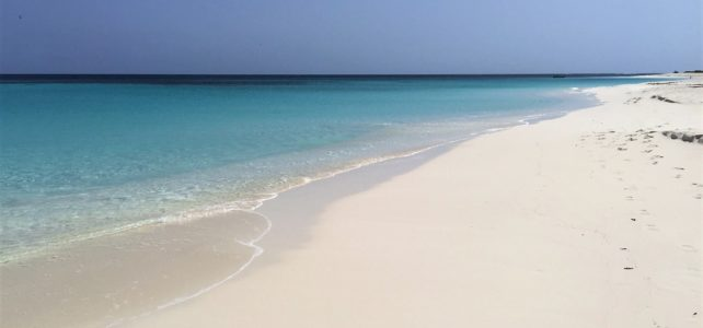 The Best Beaches to Visit on a Day Trip to Anguilla